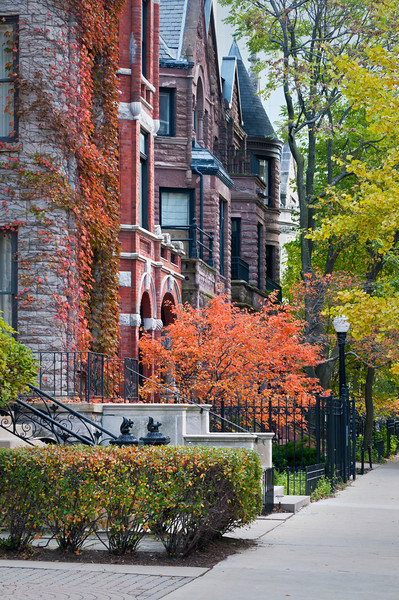 CHI 029                        <br /> Autumn on a residential street in the city of Chicago.