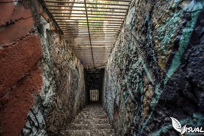 LA Zoo Staircase