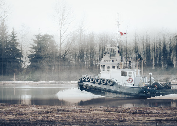 The Working Fraser River