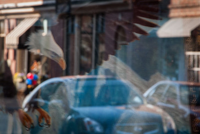 Reflection of Tanya Ogneva picture in ArtBeat gallery window  in Manassas, VA