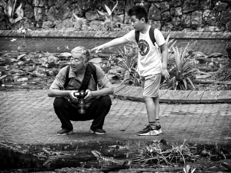 Tourists In Awe mono (1)