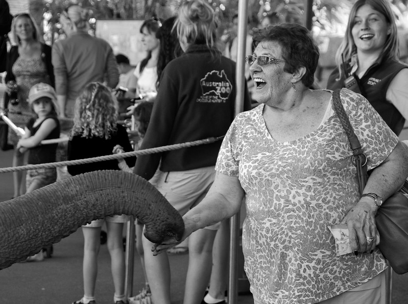 That Tickles - Australia Zoo