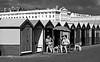Brighton Baskers (1)