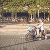 Strolling the stroller