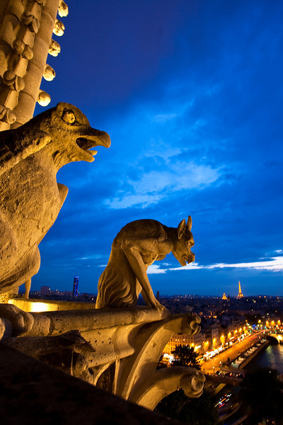 Chimeras from Notre-Dame cathedral at night, Paris, France.