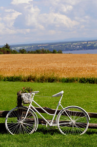 white bicycle, quebec