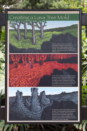 2017-01 Lava Tree State Monument