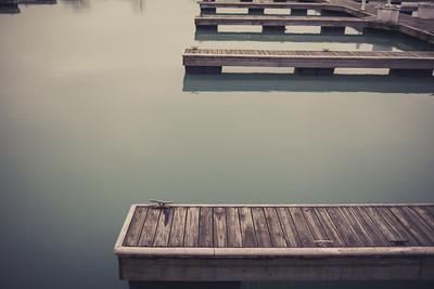 46 | 365 | Diversey Harbor