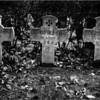 Cemetière des fusillées en 1945....
