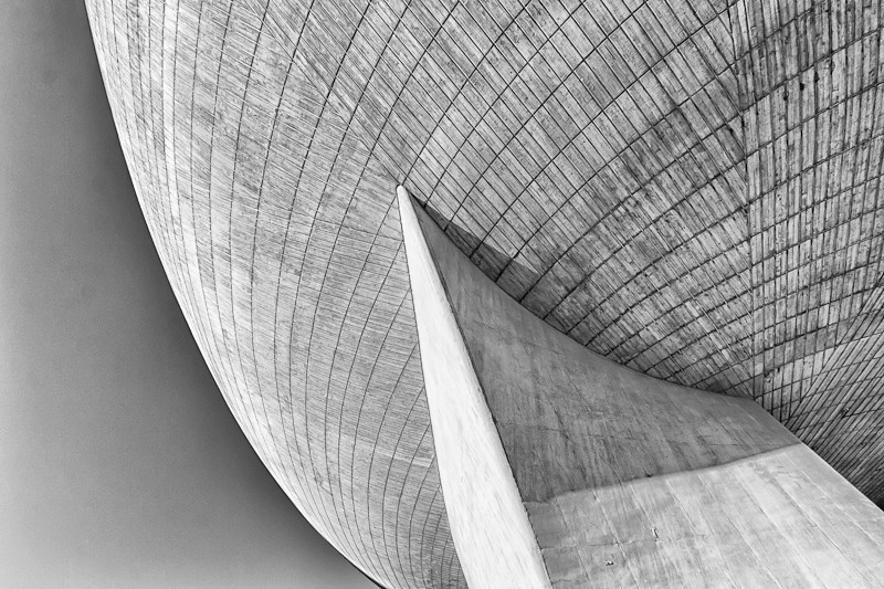 The Egg in B&W.