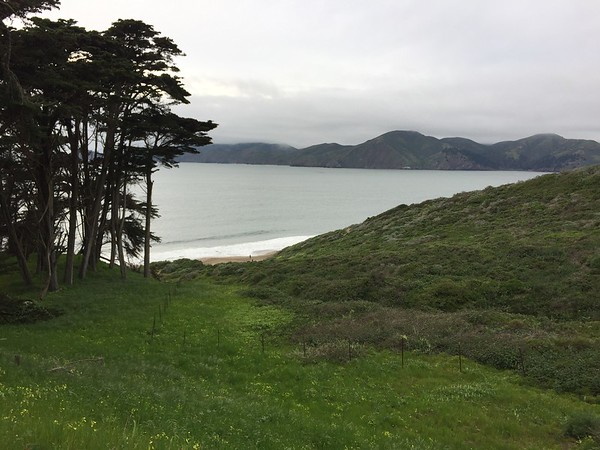 Off the Grid and Baker Beach