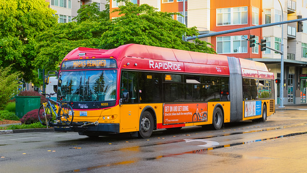 King County Metro articulated bus in downtown Redmond WA