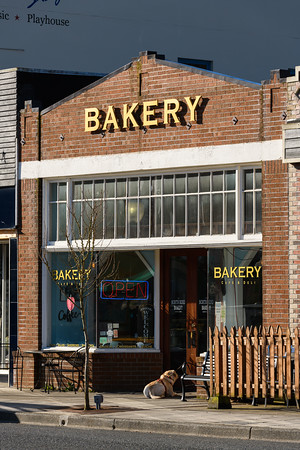 Downtown North Bend Washington bakery with dog