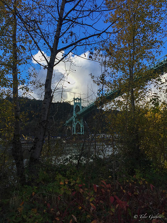 St. John's Bridge Peek-a-Boo
