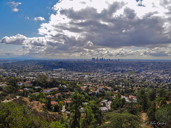 Los Angeles in the Shadows