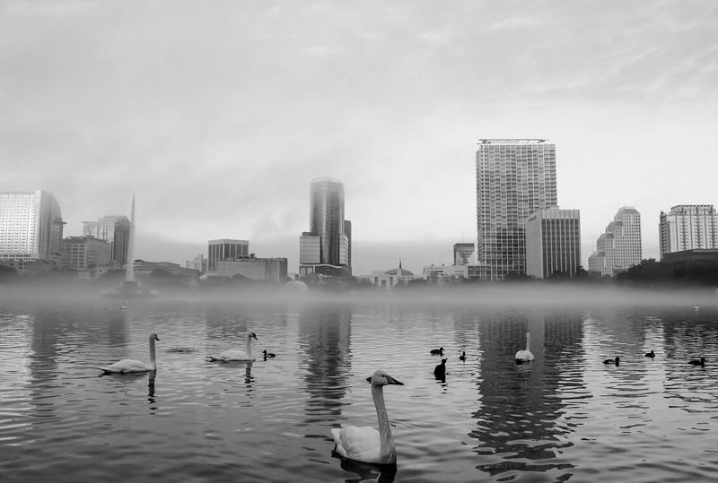 Lake Eola - Downtown Orlando