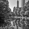 Central Park Reflections
