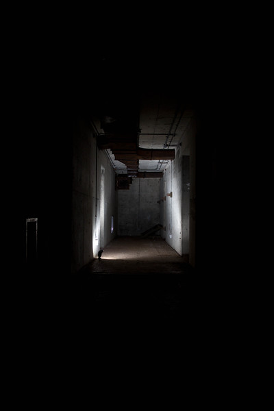The Main hallway covered in darkness.