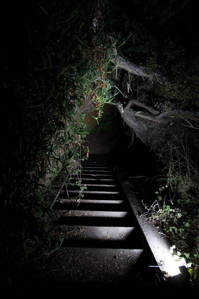 A forgotten flight of stairs that lead to a bunker with 6 rooms over 2 levels.