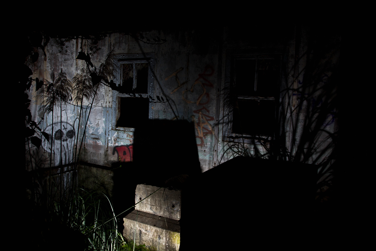 I painted the shadows of the bamboo and other grasses with my flashlights onto the walls to have graffiti next to it.