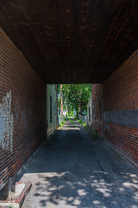 Into the Alley