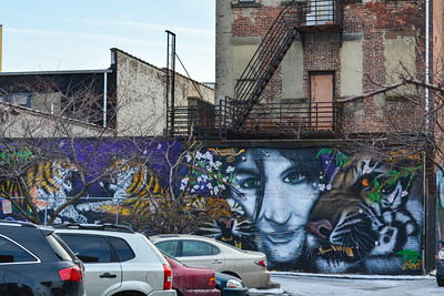 Tiger Mural in Jersey City