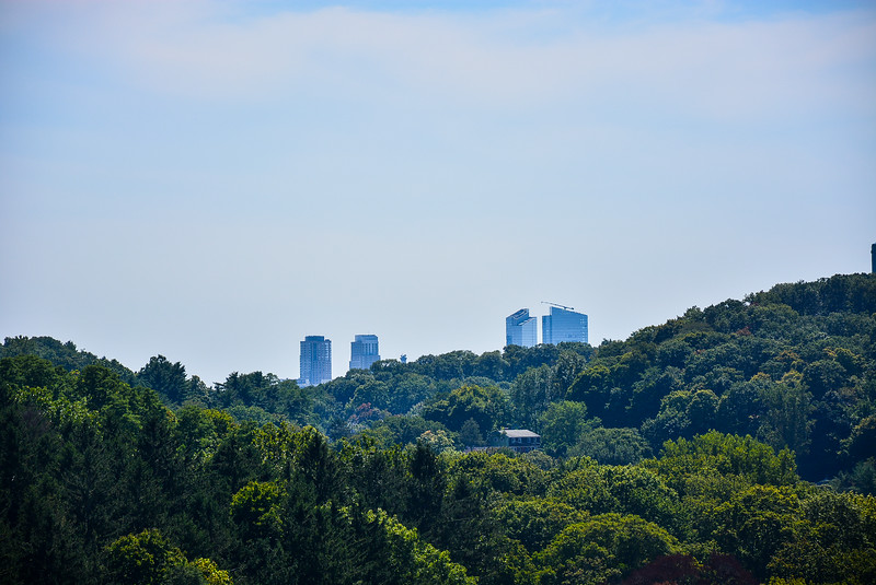 White Plains Skyline