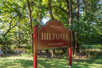 Hiltonia