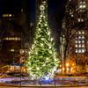 Wintery Christmas Tree