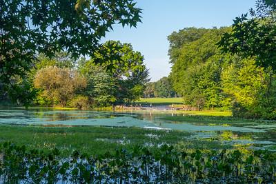 Doggy Pond