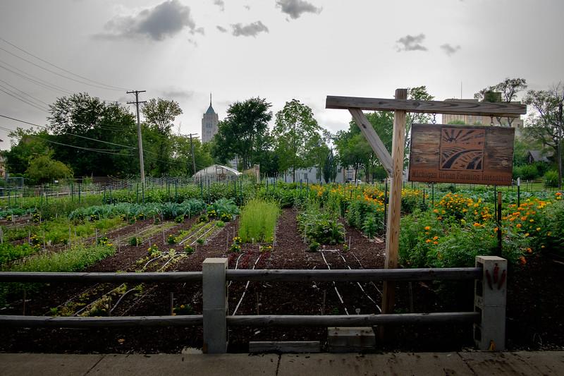 Une des 1400 fermes urbaines de Detroit