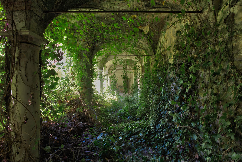 Garden of Eden II - The beautiful overgrown garden from an abandoned villa