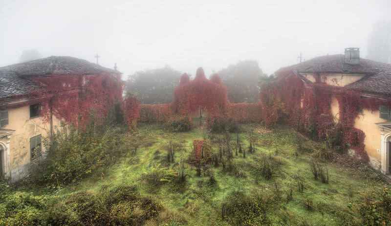 Misty Morning - Early morning garden view from an abandoned villa