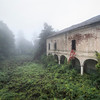 Misty Morning II - The back garden of an abandoned villa.