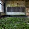 No More Pencils, No More Books - Decayed classroom where nature reigns.