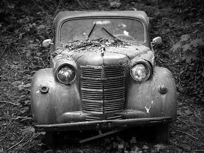 Auto Skulpturen Park
