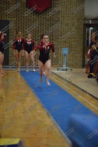 Ursinus Gymnastics v West Chester