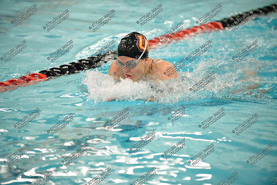 Swim011516_018