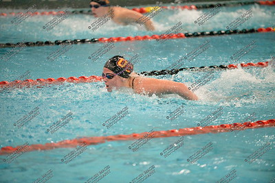 Swim011516_020