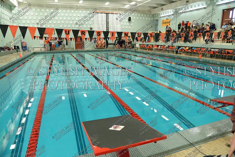 Swim112115_011