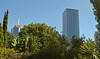 High Rises out of Greenery