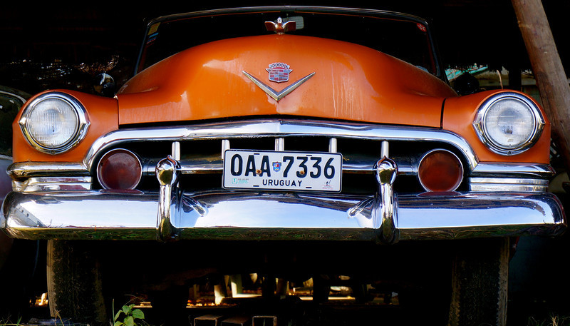 This old Cadillac was screaming for photographic attention. It was found in a yard full of old cars and things, one of which was a Fokker passenger plane from the 1950s. This was taken near Salinas, Uruguay.
