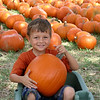 Nephew Joshua picking out his pumpkin. Halloween (2007)