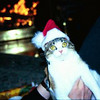 Santa Sophie. Watertown (1998)