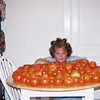 A small portion of our tomato harvest. (2000)