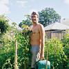 Watering tomato plants in Watertown. (2000)
