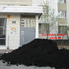 Rustem convinced the neighborhood administration to provide us with some black earth. They dumped it at the front door to our building. (2006)