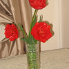 Red double tulips from our garden. (2008)