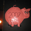 Bringing in the year of the pig.