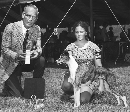 Last dog show as a Junior Dog Handler. (08.1972)